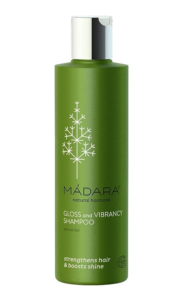 成熟した祝福する地味なマダラ グロス&ヴィブランシーシャンプー 250ml