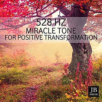 528 Hz Miracle Tone for Positive Transformation
