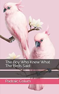 The Boy Who Knew What The Birds Said