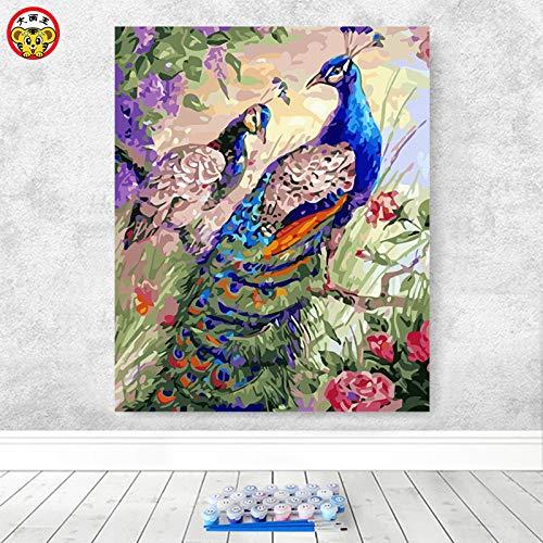 Baodanla (zonder lijst) pauw voor het openen van olieverfschilderij decoratief schilderwerk