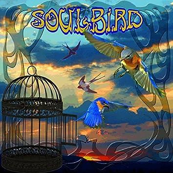 SoulBird