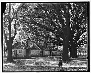 Photo: Hermitage,slave quarters,plantations,buildings,homes,Savannah,Georgia,GA,1907