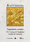 Toponimia Navarra. VII. Cuenca de Pamplona. Cendea de Antsoain: 46 (Obras Completas J. Mª Jimeno Jurío)