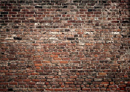LYWYGG Telón de fondo de fotografía de pared de ladrillo marrón rojizo de 7 x 5 pies de fondo de vinilo fino para fotos de fondo de...