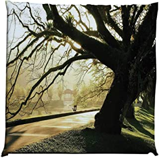 YOLIYANA Tree Durable Square Chair Pad,Taiping Lake Gardens Malaysia Serene Tranquil Woodland Idyllic View for Bedroom Living Room,One Size