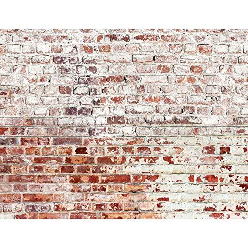 Fototapeten 396 x 280 cm Steinwand | Vlies Wanddekoration Wohnzimmer Schlafzimmer | Deutsche Manufaktur | Weiss Braun 9083012b