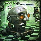Songtexte von Gov't Mule - Life Before Insanity