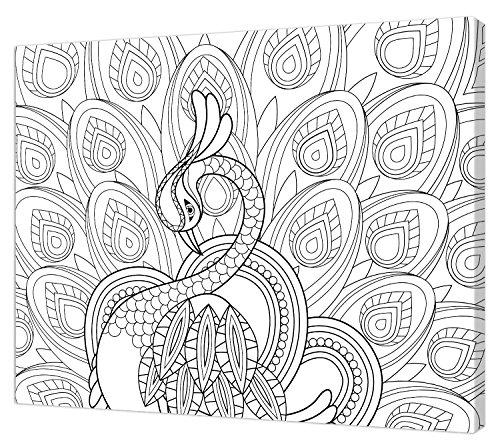 Pintcolor 7807.0 châssis avec Toile imprimée à colorier, Bois de Sapin, Blanc/Noir, 40 x 50 x 3,5 cm