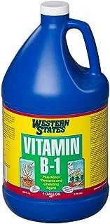 Liquinox 6128 Western States B-1, 1-Gallon