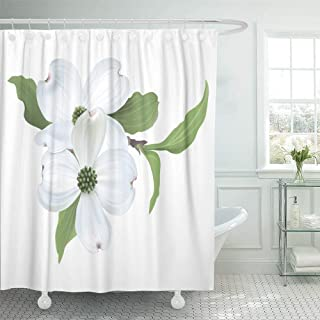 HTgoodveryer Shower Curtain with Hook Polyester Fabric Green Flower White Dogwood Cornus Florida of Blooming on Tree Beauty Bloom Blossom Waterproof Adjustable Hook Sets for Bathroom