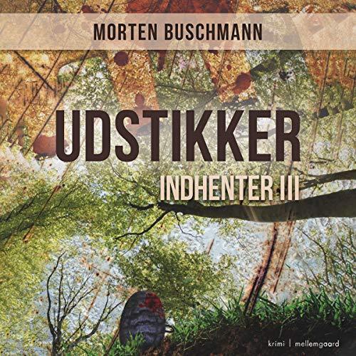 Udstikker cover art
