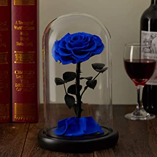 puto Preserved Real Rose Eternal Rose in Glass Dome Gift for Her Valentine's Day Birthday Mother's Day Christmas Anniversary (Blue)