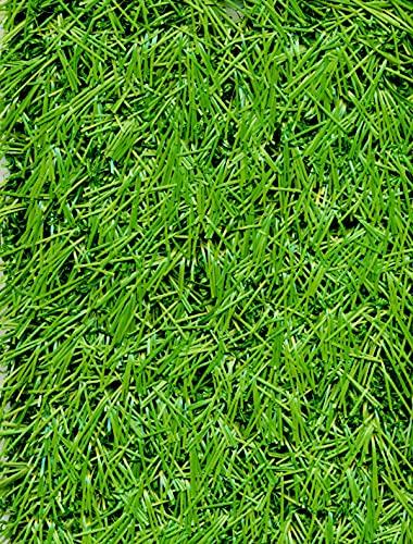 PEGANE Rouleau Gazon Artificiel d'extérieur en 100% polypropylène Coloris Vert - Dim : 4m x 25m