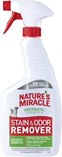 Best nature's miracle carpet cleaner Reviews