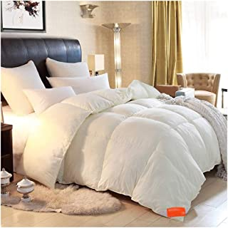 Luxurious Duvet Spring/Autumn/Winter Thickened Keep Warm Single/Double Bedding - Beige Comforter Family/Student Dormitory - Brushed Fabric Breathable Fluffy Quilt (Size : 220240cm 4.5kg)