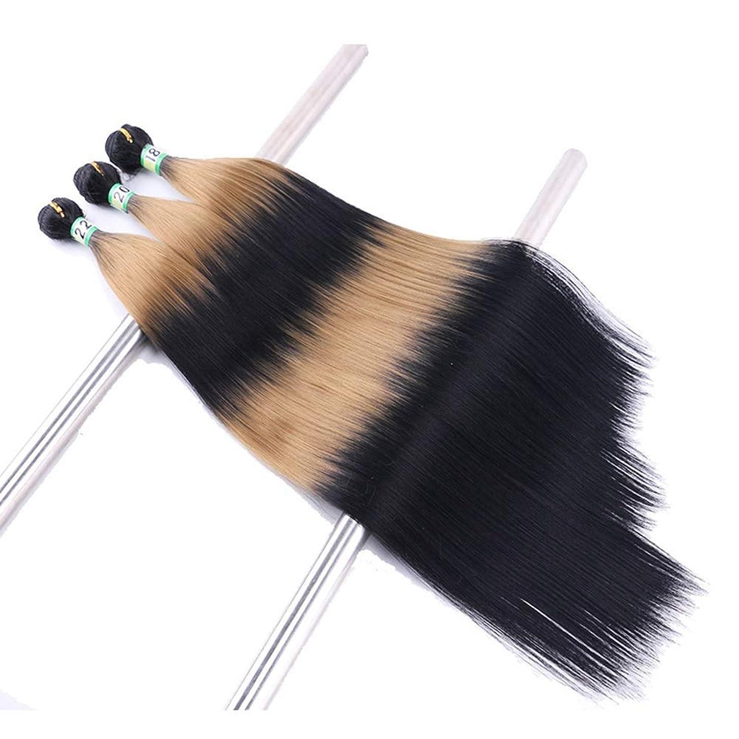 叫び声大きい繁雑BOBIDYEE 3バンドルシルクストレートヘアエクステンション - TTI / 27黒と茶色のツートンカラーの人工毛髪のかつらロールウィッグロールプレイングウィッグロングとショートの女性自然 (色 : ブラウン, サイズ : 18