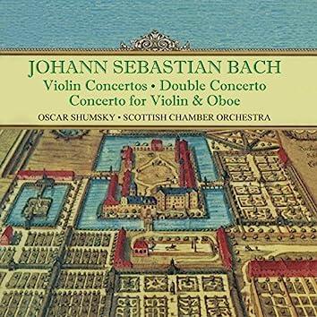 Johann Sebastian Bach: Orchestral Favourites, Vol. XV