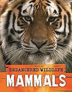 scheda endangered wildlife: rescuing mammals