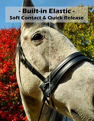Ultimate Bitless Bridle - 8