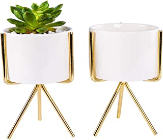 Opsuper Ceramic Succulent Pots with Golden Stand, Set of 2 White Modern Flower Cactus Planter with Drainage for Bookshelves Windowsill (E)