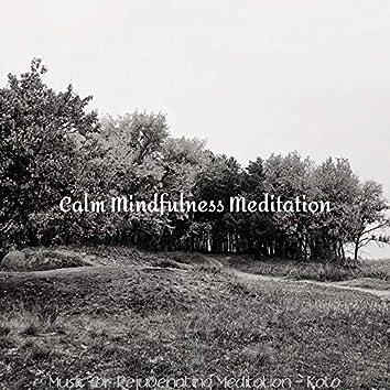 Music for Rejuvenating Meditation - Koto