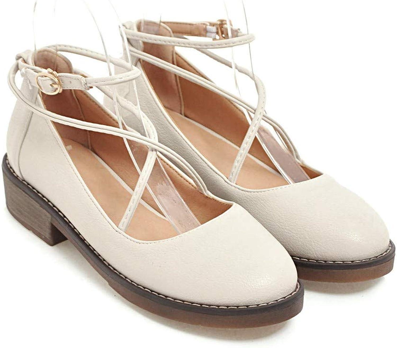 HILIB Women's Flat Heel Vintage Mary Jane shoes Buckled Dress shoes