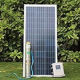 DONDOW Bomba de agua profunda solar solar pozo profundo pump123m sin escobillas de alta velocidad con imán permanente motor síncrono kit bomba de agua solar (Voltage : DC110V)