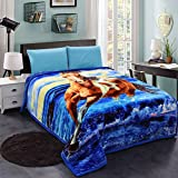 JML Heavy Warm Blanket, Plush Blanket Queen Size 79' x 93' - Korean Style, 8 Pounds, 2 Ply Printed, Silky Soft Wrinkle and Fade Resistant Raschel Fleece Blanket, Horse