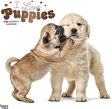 Puppies, I Love 2020 Square Wall Calendar