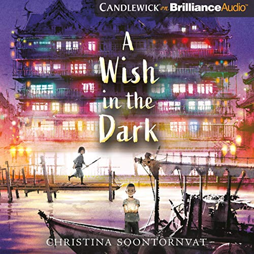A Wish in the Dark audiobook cover art