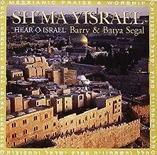 barry segal israel