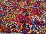 Kiara Indische handgemachte Quilts Baumwolle Blumendruck wendbar Kantha Paisley Muster Tagesdecken und Decken Stich Überwurf Twin Size/Queen Size (Barbie Pink, Queen)