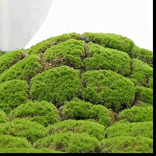 XHSP Artificial Grass Rug Fake Moss Grass Turf DIY Synthetic Turf Landscape Artificial Grass Mats Lawn Carpet for Wedding Home Backyard Patio Balcony Indoor Outdoor Decor (Smallgubao, 3.28x3.28 ft)