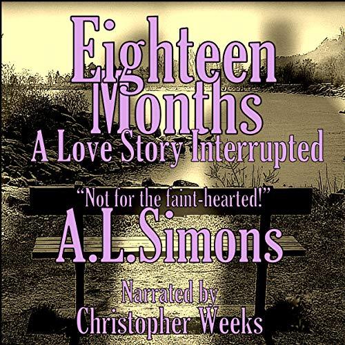 Eighteen Months audiobook cover art