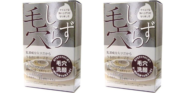 検査元気め言葉ペリカン石鹸 毛穴しらず 洗顔石鹸 100g (2個セット)