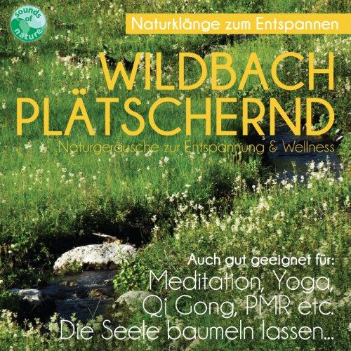 Wildbach plätschernd - Naturgeräusche zur Entspannung & Wellness - gut für die Seele Meditation Yoga Qi Gong