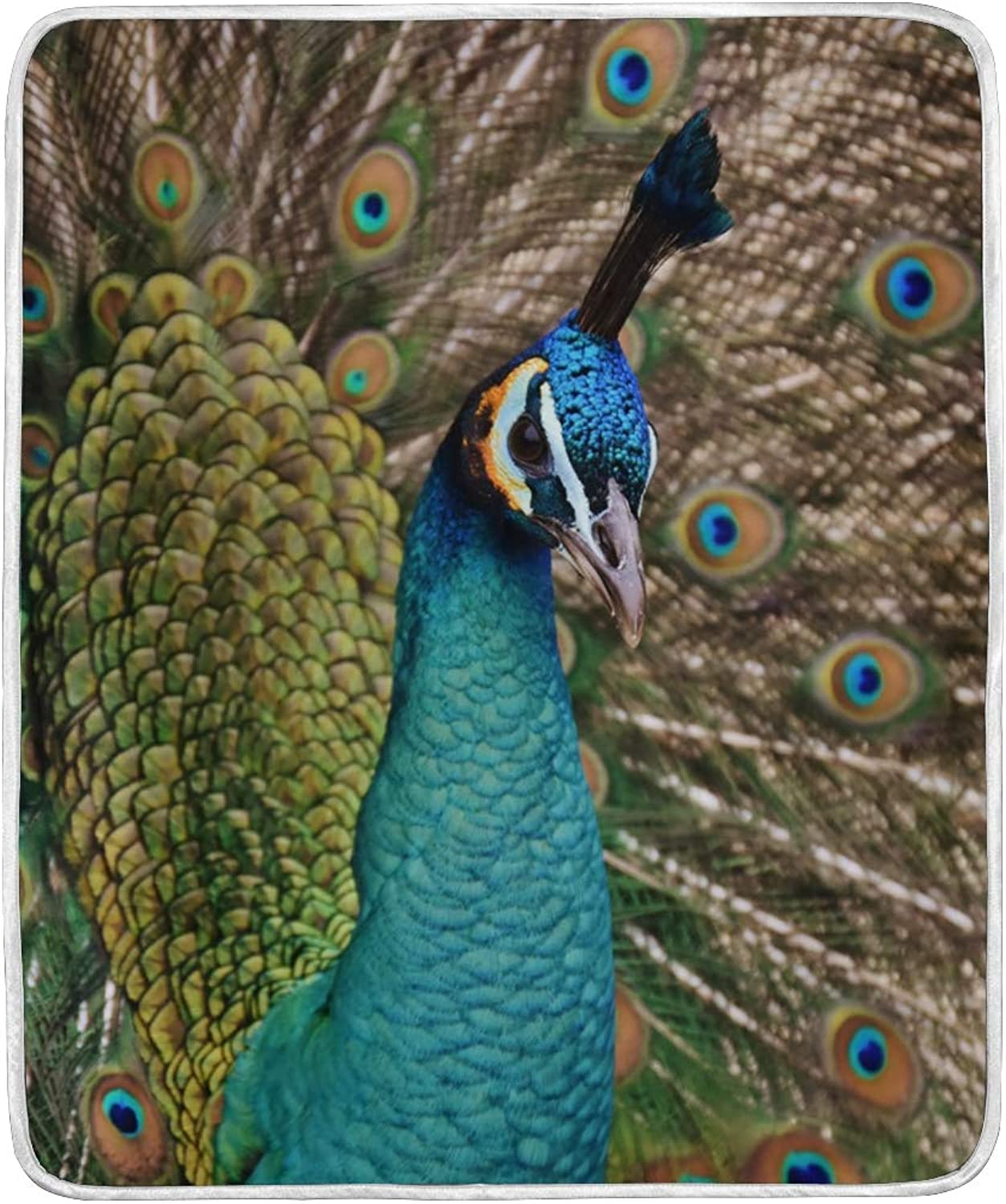 WIHVE Throw Blanket Peacock Lightweight Warm Cozy Microfiber Blankets Travelling Camping 50 x 60 Inch, All Season for Couch or Bed