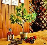 CCLIFE Mini LED Lichterbaum Weihnachtsbaum klein Künstlicher Tannenbaum mit LED Lichterkette Beleuchtung Kiefern Baum im Topf Kunstpflanzen Fensterdeko dekoration Schreibtischbaum