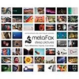 metaFox - ORIGINAL Postkarten-Set der besonderen Art mit 52 Karten - Kartenset Konversation Spiel Achtsamkeit Coaching Tool Motivationskarten Gefühlskarten Kommunikationstraining