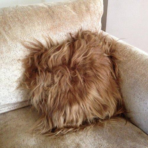 Marrón de oveja islandesas cojín - diseño de chica con melena - algodón diseño de
