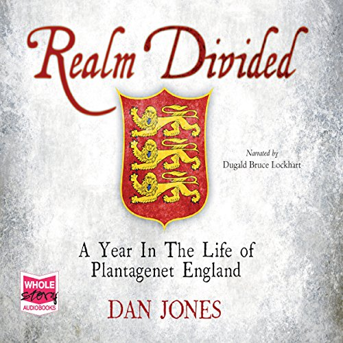 Realm Divided audiobook cover art