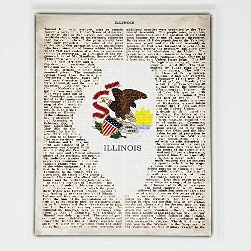 Illinois Flag Canvas Wall Decor - 8x10 Decorative IL State Map Silhouette Encyclopedia Art Print - Ready To Hang - Home State Love Handmade Gifts - ILL Decorations