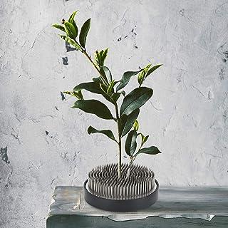 Aiguille d'arrangement de fleur de longue durée de vie de Kenzan de fleur pour l'artisanat d'arrangement de fleur pour la ...