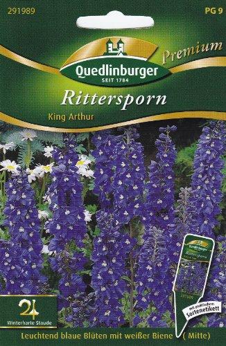Rittersporn, King Arthur