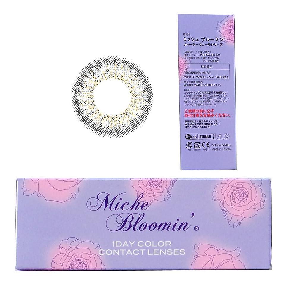 賢明な平方立証するミッシュブルーミン Miche Bloomin 1day 09 シェルムーン 10枚入 2箱セット (PWR) -7.50