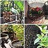Griglia di spine barriera per animali, griglia di difesa per gatti picchi di paura per gatti difesa degli animali scat mat rete anti gatti per giardino a casa, 200x30 cm #3