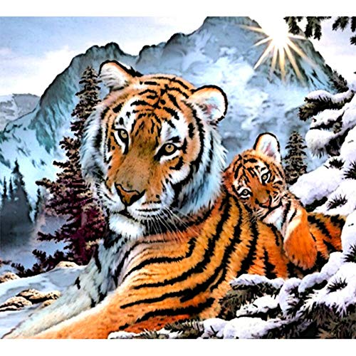 Pintar por Numeros para Adultos y Niños, Madre tigre y bebé tigre DIY Pintura por Números con Pinceles y Pinturas Decoraciones para 40 x 50 cm Sin Marco
