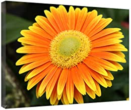 Flowers Victoria Bc