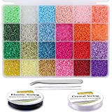 EuTengHao 13200Pcs Glass Seed Beads Small Craft Beads Small Beads for DIY Bracelet Necklaces Crafting Jewelry Making Supplies with Two 0.6mm Clear Bracelet String (3mm, 550 Per Color, 24 Colors)