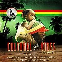 Vol. 1-Cultural Vibes